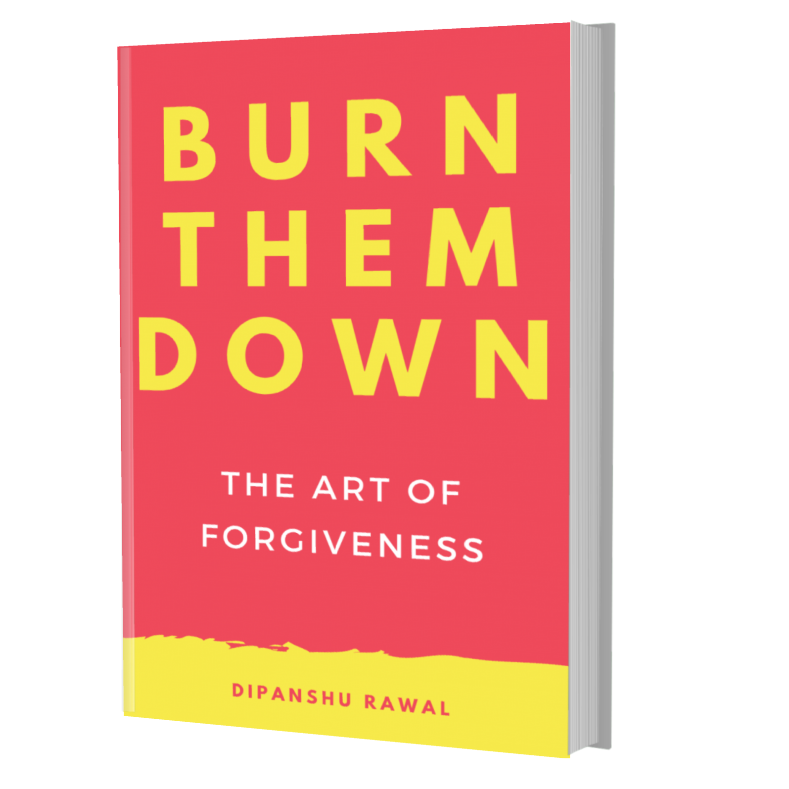 BURN THEM DOWN - Book Cover